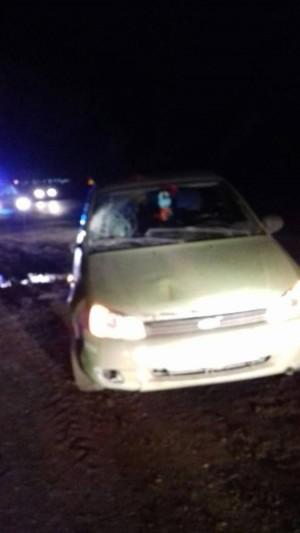 По данным инспекторов ГИБДД, в момент аварии водитель транспортного средства находился в трезвом состоянии.