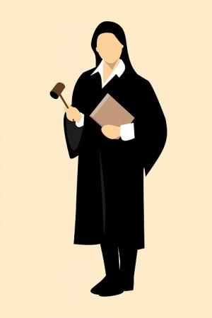 Сокирская сдала в областной Палате адвокатов квалификационный экзамен. Недавно ее имя появилось на сайте ПАСО в реестре адвокатов.