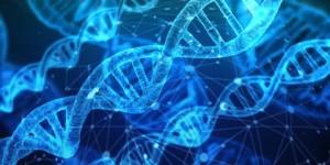 Китайский учёный заявил, что создал генетически модифицированных детей ДНК эмбрионов были изменены.
