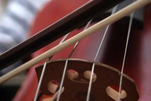 Виолончель была изготовлена в XVIII веке итальянским мастером Джованни Гваданини, который был учеником Антонио Страдивари. Ростропович купил её в 2000 году. Этот инструмент был мечтой всей жизни музыканта.
