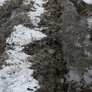 Самарцев не волнует сохранность памятников — они думают про грязь и плохие дороги
