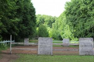 175 га парка имени 60-летия Советской власти распланируют ради гарантий ее сохранности