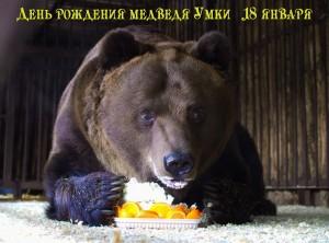 Самарцев приглашают в зоопарк на День рождения Медведя Умки
