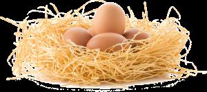 Продавать яйца