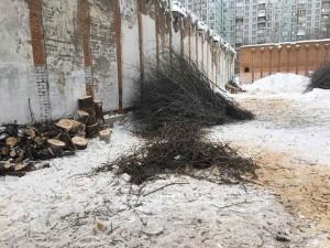 Сотрудники «РКС-Самара» очистили охранную зону станции от деревьев и кустов с помощью полиции В 2019 году планируется убрать деревья от 22 станций.