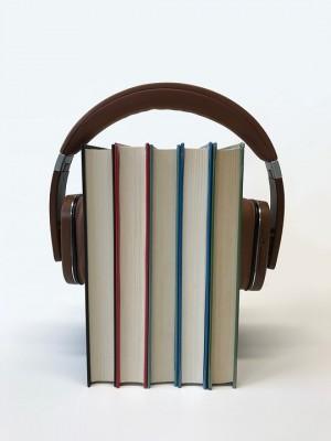 По мнению автора инициативы, ребёнок сможет слушать нужную литературу в электричке или поезде.
