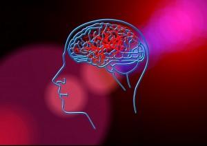 Неврологическое отделение для больных с ОНМК оказывает специализированную помощь больным с ишемическим инсультом, геморрагическим инсультом, преходящими нарушениями мозгового кровообращения.