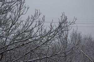 В Самарской области ожидается сильный снег, метель Водителей просят быть внимательными на дорогах.