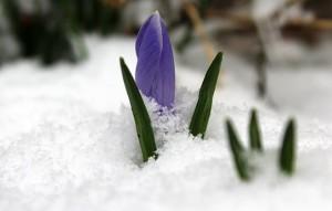 В Самаре побит температурный рекорд Вскоре регион ожидает похолодание.