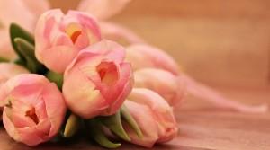 В «Роскачестве» раскрыли секрет выбора идеальных цветов