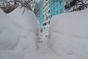 Современные технологии зимней уборки, предложенные коммерсантами, в Самаре не прижились