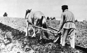 Весной 1919 года произошло восстание крестьян Симбирской и Самарской губерний.