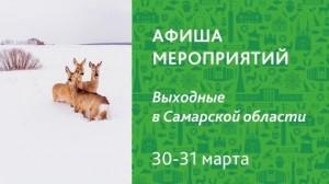 Чем заняться на выходные в Самарской области?