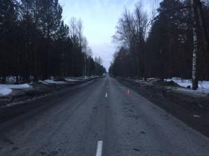 В Самарской области ночью водитель насмерть сбил пешехода