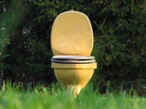 Около 22,6% населения России не имеет доступа к централизованной канализации. Большинство таких семей пользуются выгребными ямами, говорится в исследовании Росстата об условиях жизни в стране.