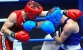 В Анапе состоялось первенство России по боксу среди юношей и девушек 15-16 лет. В Арзамасе прошло первенство Приволжского Федерального округа по боксу среди юниоров 17-18 лет.