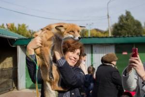 Самарский зоопарк приглашает всех жителей и гостей региона поучаствовать в акции «Погладь меня»