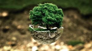 Цель данного проекта – формирование экологического сознания и культуры  безопасности у подрастающего поколения.