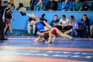 Соревнования пройдут в 11 весовых категориях среди юношей до 18 лет. В турнире примут участие около 300 юных спортсменов из более, чем 20 регионов России.