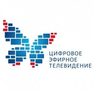 Добровольцами стали студенты ПГУТИ и других университетов, а также молодые люди из Самарского дома молодежи.