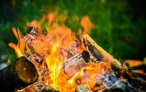На период действия которого устанавливаются дополнительные требования пожарной безопасности, в лесу запрещено разводить костры, проводить работы с открытым огнем.