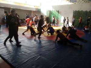В Самаре стартовал турнир по греко-римской борьбе