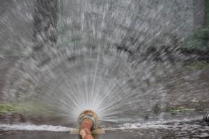 Поливной сезон в Самаре начинается 1 мая и заканчивается 31 августа