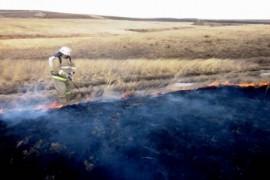 В районе н.п. Николаевка м.р. Волжский горела сухая трава на 6 га..  Устанавливают причину пожара.