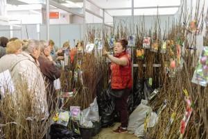 Самарцы открыли «Дачный сезон» За четыре дня работы выставку посетили 12 тысяч человек.
