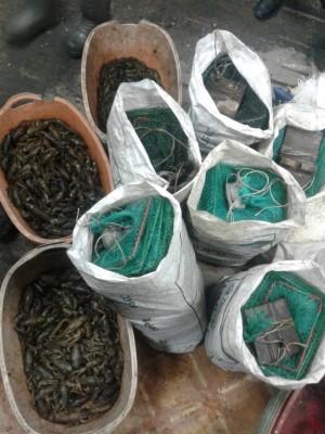 В Сызрани задержали браконьеров, ловивших раков и рыбу