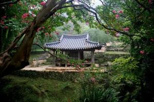 В музее им. П.В. Алабина откроется выставка «Искусство Корейской Народно-Демократической Республики»
