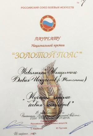 Школа боевых искусств Тольятти названа лучшей в России