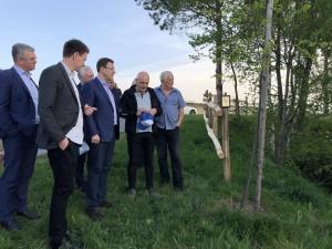 В 2017 году его посадили здесь при участии делегации из Тольятти.