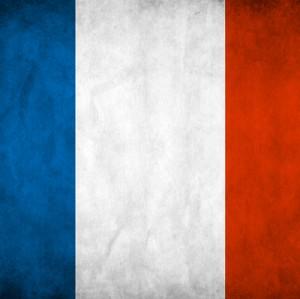 Во Франции планируют поднять вопрос о снятии антироссийских санкций