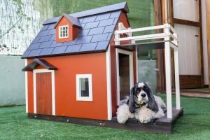 В законопроекте говорится, что оформление прав на жилые и садовые дома, жилые строения будет осуществляться в прежнем упрощенном порядке.