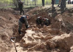 Речь идёт о массовом захоронении, найденном в Новгородской области.