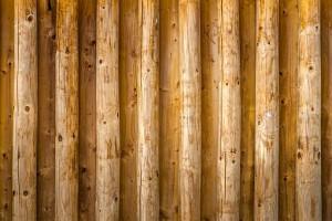 Минпромторг предложил строить школы и больницы из дерева