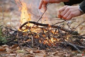 Введены ограничения на въезд транспортных средств и пребывание граждан в лесах, а также проведение работ, связанных с разведением огня на территории лесных участков, граничащих с районами города.