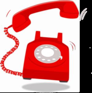 Каждый позвонивший сможет получить информацию по вопросам организации услуг детского отдыха, а именно питания, условий проживания, распорядка дня, организации купания, спортивных мероприятий, трудовой деятельности и др.