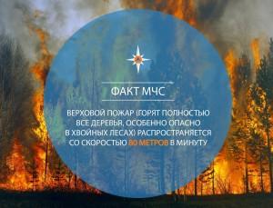 4-й класс пожарной опасности лесов установился в 2 городских округах и 8 муниципальных образованиях Самарской области