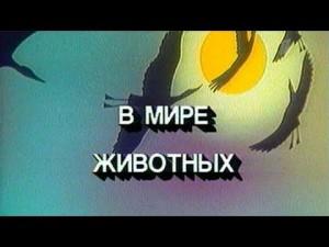 Отвечая на вопрос, может ли он передумать и вернуться на телевидение, Дроздов ответил: «Нет. С какой радости?».
