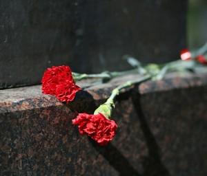 В день начала Великой Отечественной войны в Самарской области пройдет акция «Горсть Памяти»