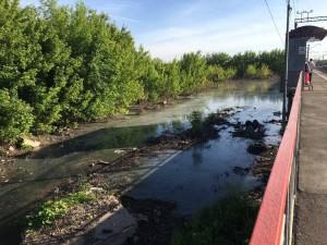 Вишневый овраг в Самаре затопило «Кока-Колой»