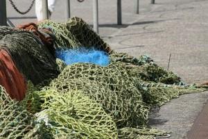 В Самаре уничтожат 3 тысячи орудий незаконного лова, отобранных у браконьеров
