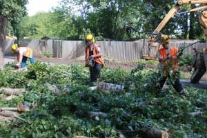 РКС-Самара приводит санитарно-охранные зоны водопроводных и канализационных сетей в нормативное состояние