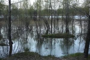В Иркутской области за сутки на 85% сократилось число подтопленных домов
