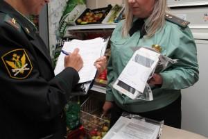 У самарской предпринимательницы арестовали кассовый аппарат