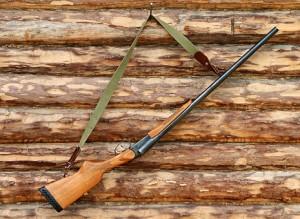 В Самарской области уточнили сроки действия запрета на охоту