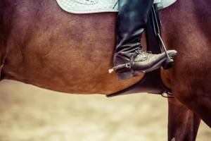 17 августа соревнования начнутся парадом торжественного открытия турнира в конном строю.