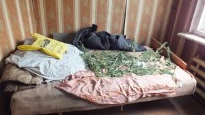 У жителя поселка Авангард в Самарской области нашли более 270 граммов марихуаны Мужчине грозит лишение свободы сроком до десяти лет.